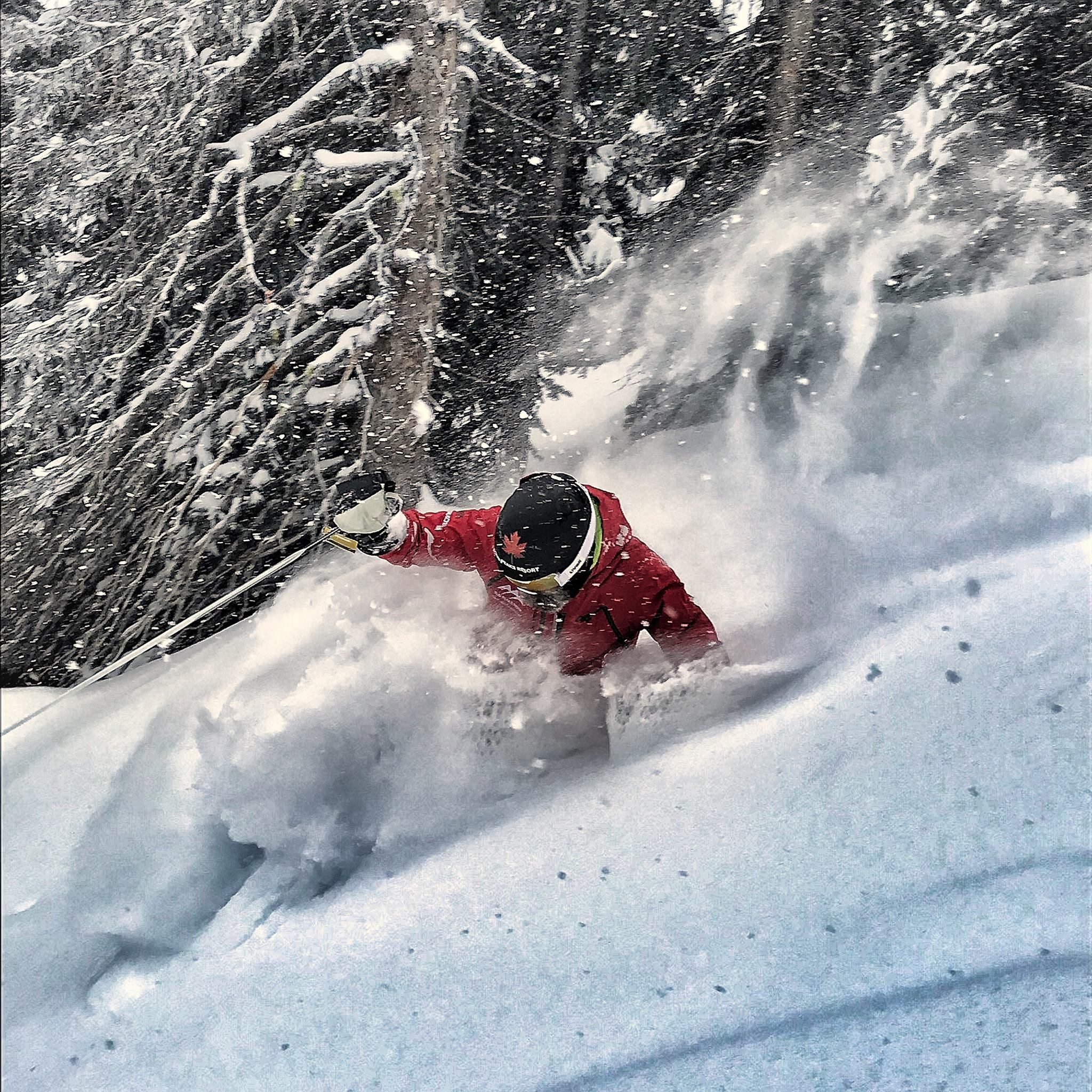 New in 2019/2020 - professionally guided Sun Peaks heli-ski and cat-ski day trips