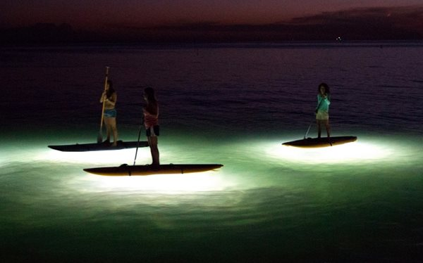 Sun Peaks fall activities - night time stand up paddleboarding at Sun Peaks Resort (photo courtesy Paddle Surfit)