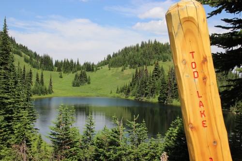 Mt. Tod hike