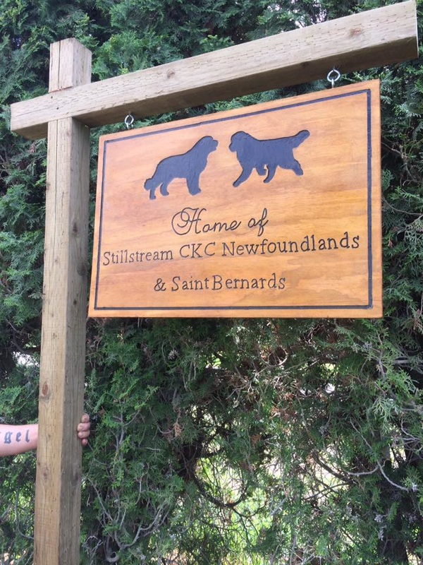 Custom Creative Wooden Hanging Signs