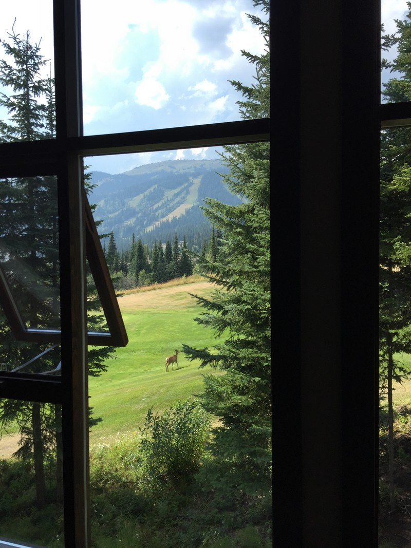 Perfect condo for a Sun Peaks golf getaway