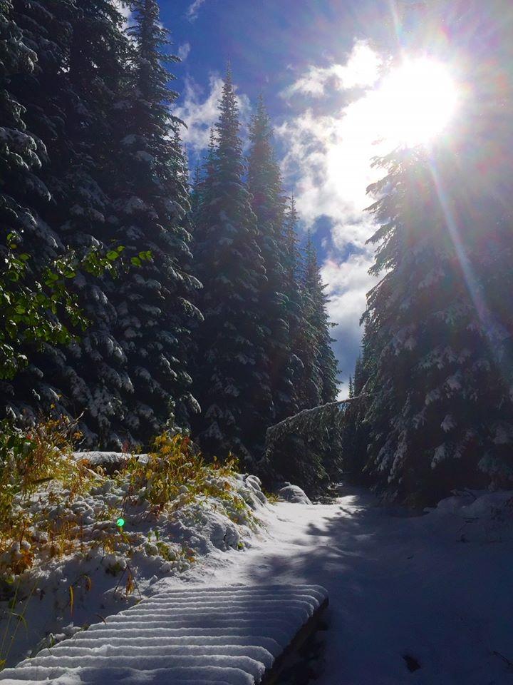 Fall hike on Mt. Morrisey