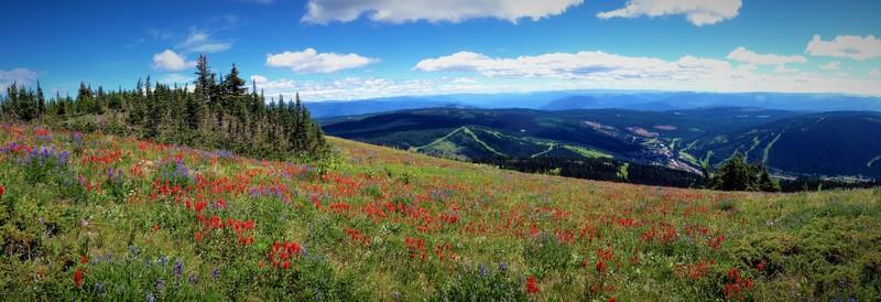 Summer hiking at Sun Peaks Resort