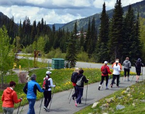 Private or Group Nordic Pole Walking Training