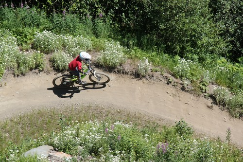 Lift accessed singletrack mountainbike trails at Sun Peaks Resort - photo by BestSunPeaks.com