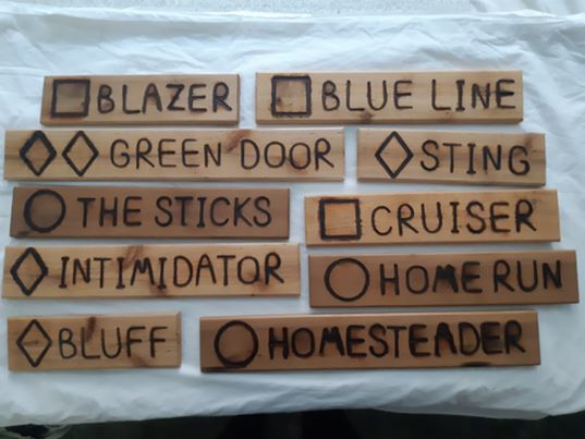 Custom wood name signs