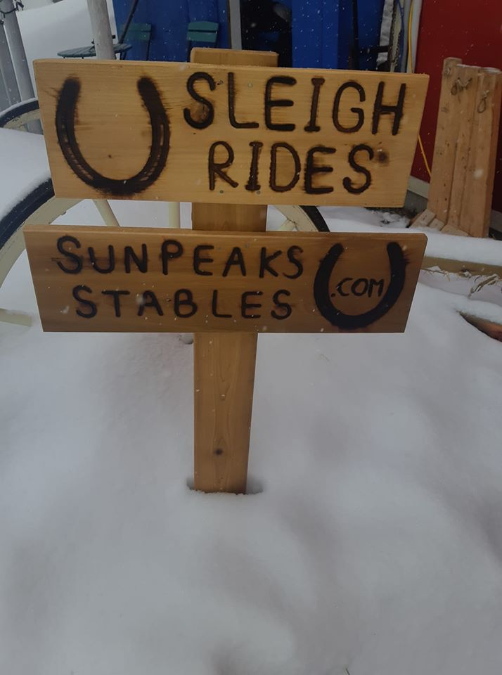 Custom wood business signs