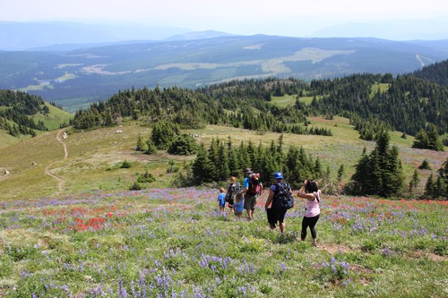 Mount Tod Summit Hike 2014