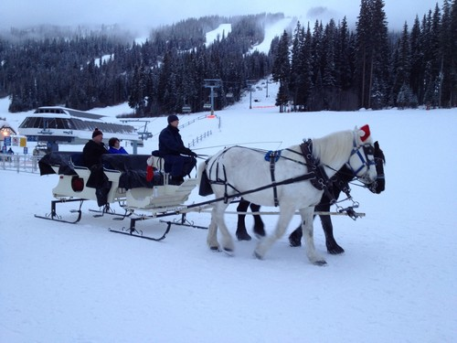 Sun Peaks winter sleigh rides