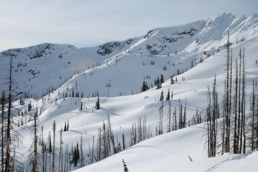 Over 33,000 acres of back-country skiing